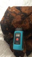 Лечебный гриб Чага и Шунгит-камень здоровья